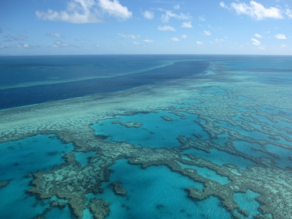 Aerial view of Great Barrier Reef - photo by Rob McFarland