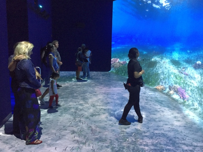National Geographic Encounter Ocean Odyssey - photo by Rob McFarland